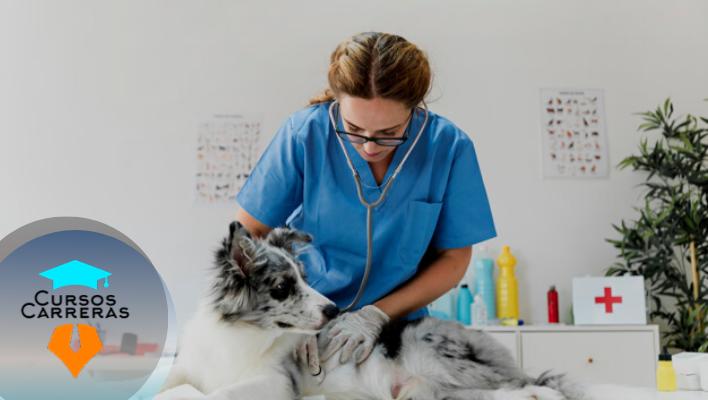 Especialización en Sanidad Animal